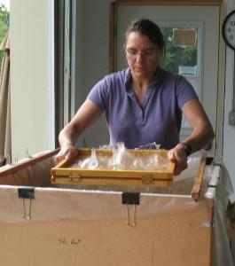Barbara sheetforming